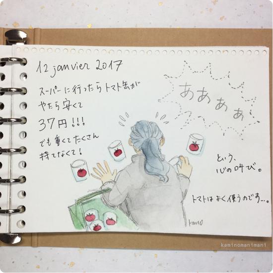 bl_d12janv2017.jpg